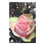 Capullos de rosa en monocromo  papeleria