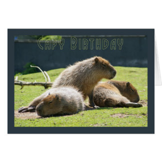 Capy Birthday - Capybara Birthday Greeting Card
