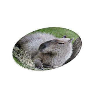capybara 07 porcelain plates
