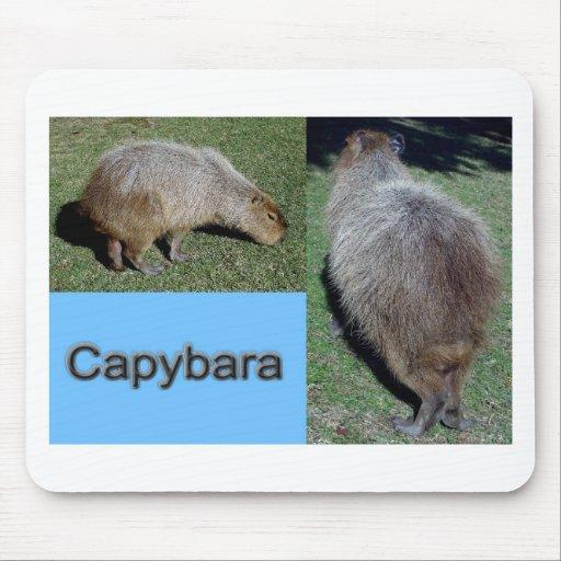 Capybara-2 Mouse Pads
