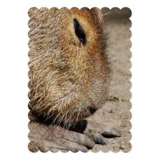 capybara-5 5x7 paper invitation card