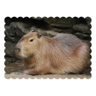 capybara-7 5x7 paper invitation card