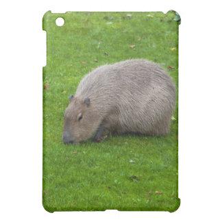 Capybara animal asombroso