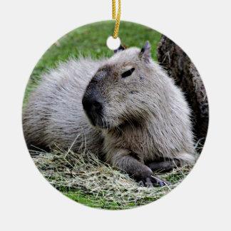 capybara, ceramic ornament