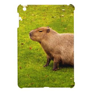 Capybara iPad Mini Cobertura