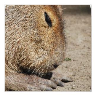 """Capybara Invitations 5.25"""" Square Invitation Card"""