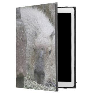 capybara iPad pro case