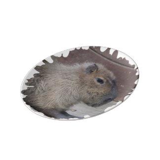 capybara, máscara plato de cerámica