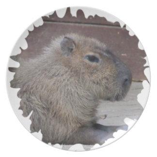 capybara, mask plate