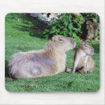 Capybara Mom and Son Mousepad Mouse Mat