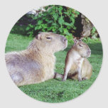 Capybara Mom and Son Stickers Stickers