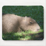 Capybara Mouse Pad