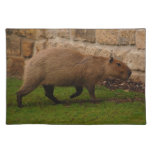 capybara place mat