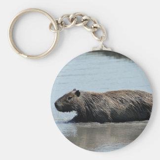 Capybara plunging into water basic round button keychain