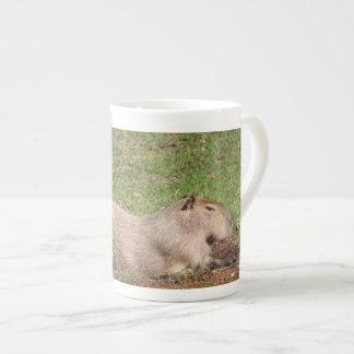 Capybara que toma el sol tazas de china