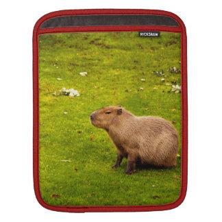Capybara Sleeve For iPads