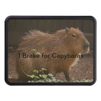 Capybara Tow Hitch Cover