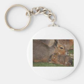 Capybaras Basic Round Button Keychain