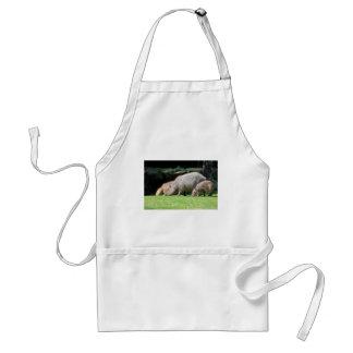 Capybaras grazing adult apron