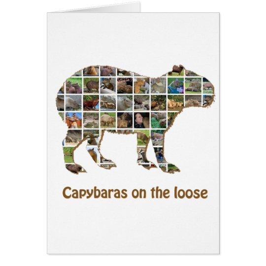 Capybaras on the loose card