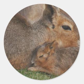Capybaras Pegatina Redonda