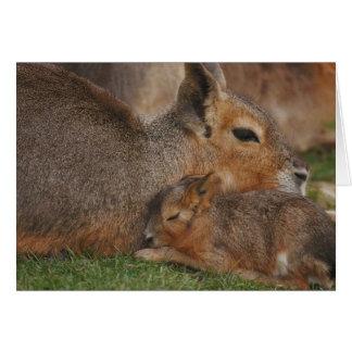 Capybaras Tarjeta De Felicitación