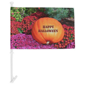"CAR FLAG,""HAPPY HALLOWEEN/PUMPKIN & FALL FLOWERS"" CAR FLAG"
