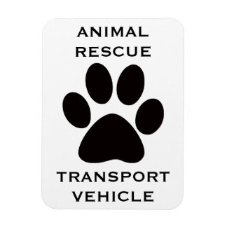 Car Magnet: Animal Rescue Transport Vehicle Magnet
