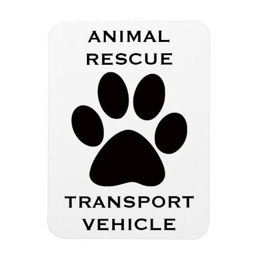 Car Magnet: Animal Rescue Transport Vehicle