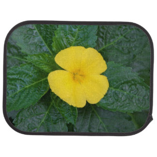 Car Mats - West Indian Holly