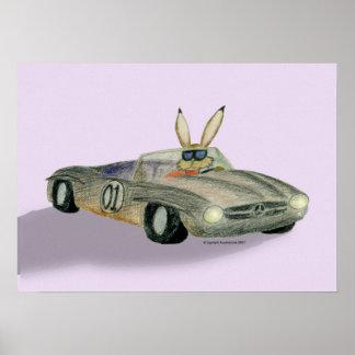 Car Racing Rabbit Poster