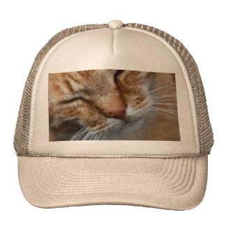 Cara anaranjada del gato gorros