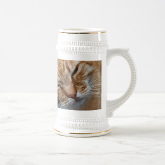 Cara anaranjada del gato jarra de cerveza