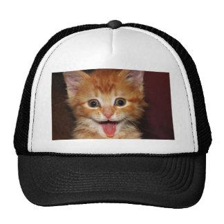 Cara anaranjada divertida del gatito gorras