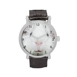 Cara blanca del conejillo de Indias Relojes De Pulsera
