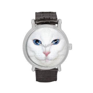 Cara blanca del gato