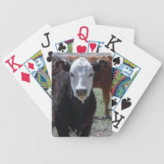Cara blanco y negro de la vaca joven occidental barajas