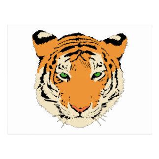 Cara/cabeza del tigre tarjetas postales