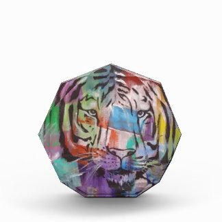 cara colorida brillante del tigre de DSC00414.jpg