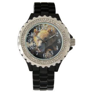 Cara costera del oso grizzly - foto de la fauna relojes de mano