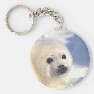 Cara de cría de foca llavero personalizado