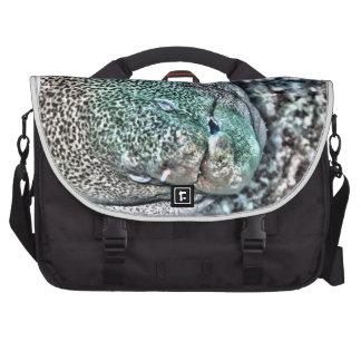 Cara de la anguila de Moray Bolsas De Portatil
