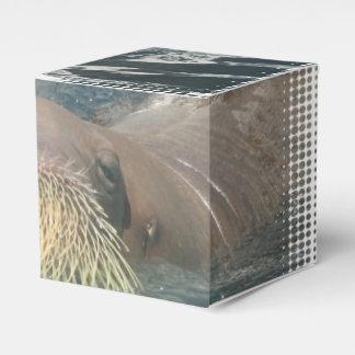 Cara de la morsa cajas para regalos de boda