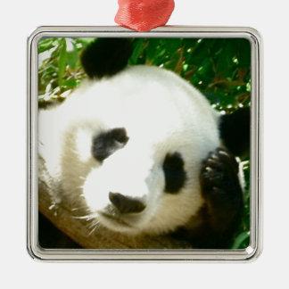 Cara de la panda adorno de navidad
