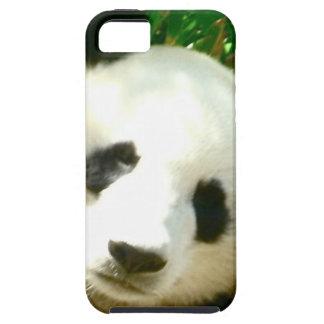 Cara de la panda iPhone 5 cobertura