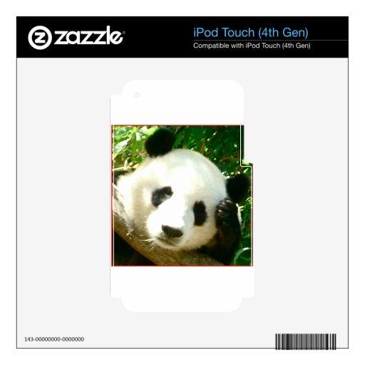 Cara de la panda iPod touch 4G calcomanías