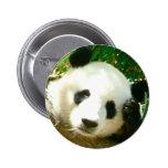 Cara de la panda pins