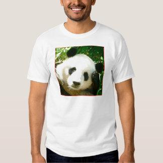 Cara de la panda playera