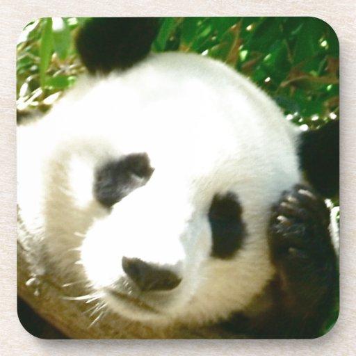 Cara de la panda posavasos de bebidas