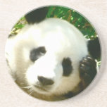 Cara de la panda posavasos para bebidas